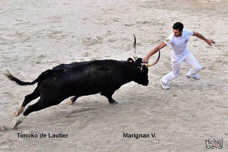 ST MARTIN DE CRAU 41