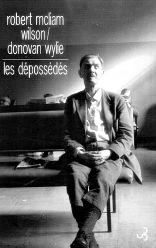 Les dépossédés, Robert McLiam Wilson - Donovan Wylie