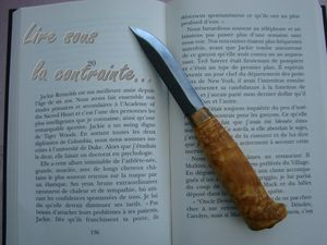 http://p7.storage.canalblog.com/72/60/877996/82359459_p.jpg