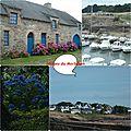 Mosa_que_Images_du_Morbihan