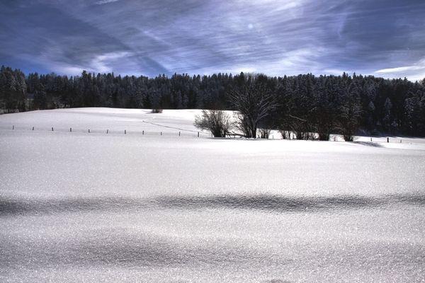 Franches_montagnes