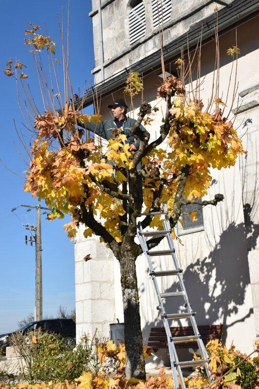 Villaz-2015-11-10_10-51-35coupe d automne