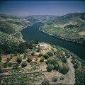 Douro (ii)