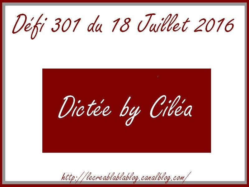 Défi 301