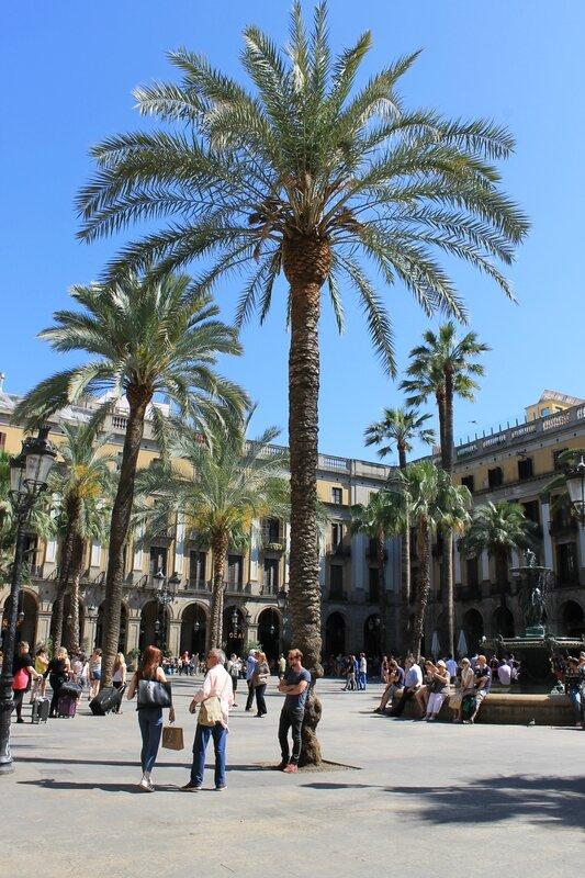 barcelona (201)