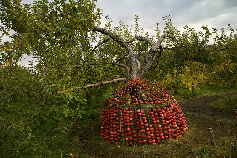 pommesmaison