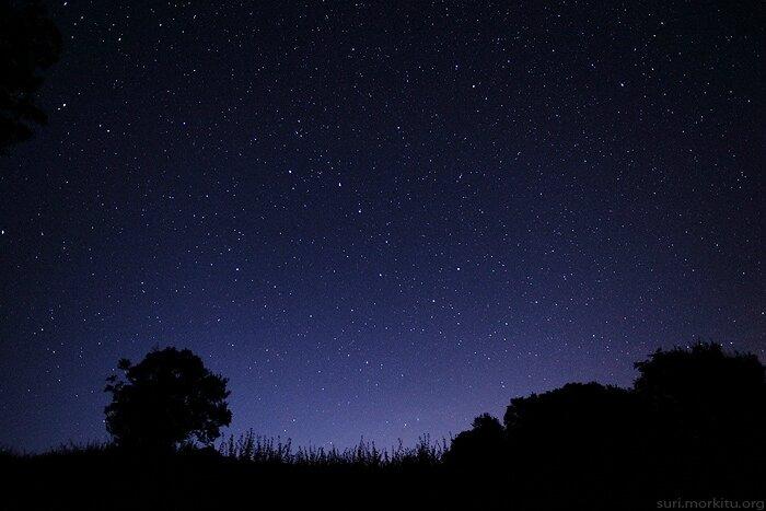 Grand m re la lune o le grimoire de la dame aux herbes - Image ciel etoile ...