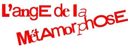 ange_de_la_metamorphose