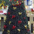 décembre 2010 (3)