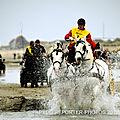 100-285-MARATHON D ATTELAGES 2012