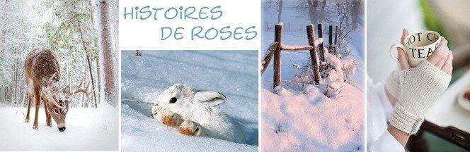 hiver (2)