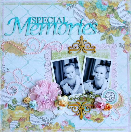 special memories 001