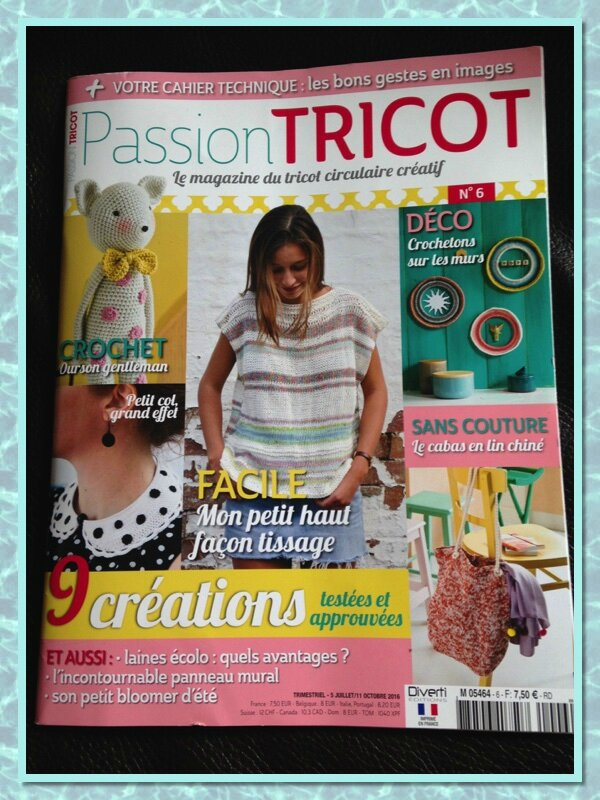 passiontricot6