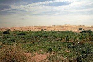 mauritanie_5210