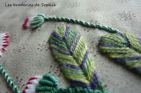 Paquerettes Gipsy (5)