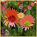 Fleurs en boutons