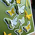 Carte envol de papillons