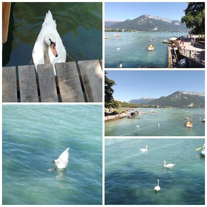 8 Annecy (16)