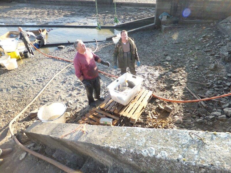 Pêche à l'étang du moulin
