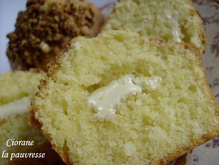 muffin_coco_chocolat_blanc_et_pralin