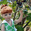 Défi d'août: cueillette des mûres pour bleuenn