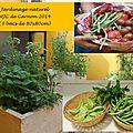 Jardinage naturel avec les écoles et centres de loisirs
