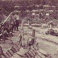Argonne 1er juillet 1915