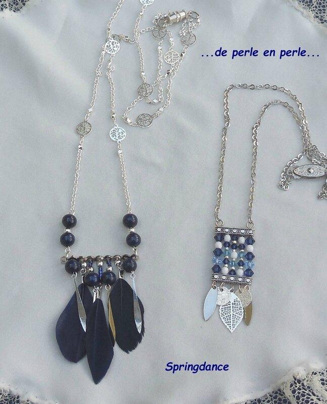 Les bleus DSCN2005