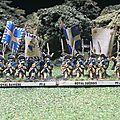 Brig Royal Suedois dos