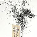 2013-03 25ème Festival du livre de Bécherel