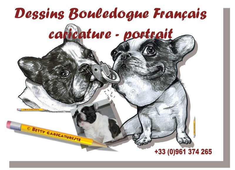 dessin bouledogue français french bulldog portrait caricature