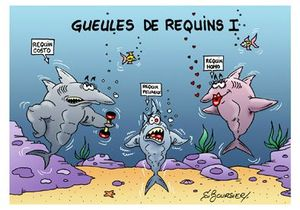 gueules de requins I
