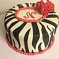 Zebra cake de Nath