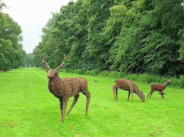 traquair%20deer