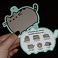 Mon coussin chachat [pusheen]