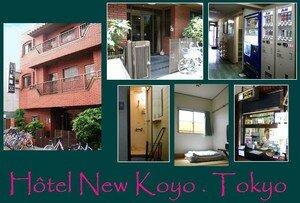 4_Hotel_New_Koyo