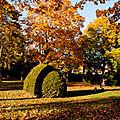 La chaleur de l'automne...