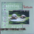 CJ Nicoue - Tortues - page droite