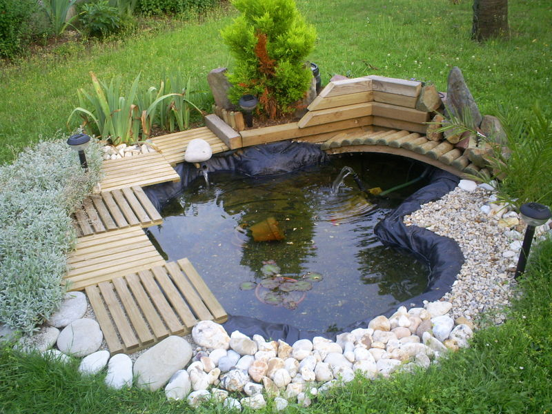 Photos - Bild - Galeria: DECORATION BASSIN DE JARDIN