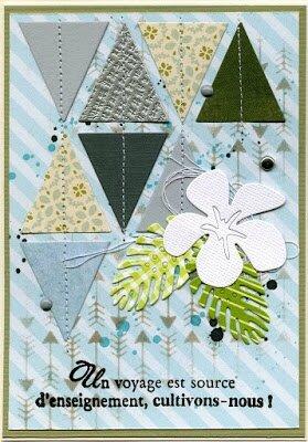 carte 8 triangles