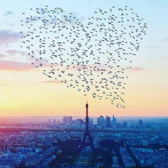 coeur paris