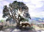 09 JL arbre cheval