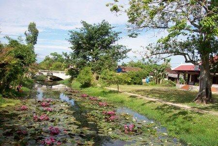 Vietnam_137_800