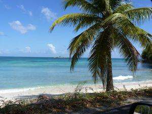 Guadeloupe 022