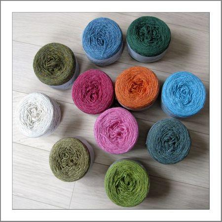 Petits bouts de laine 2012