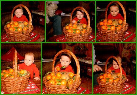 thema_et_les_mandarines