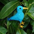 Un oiseau bleu