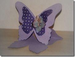carte butterfly DSC_0265 03-02-2012 18-18-49