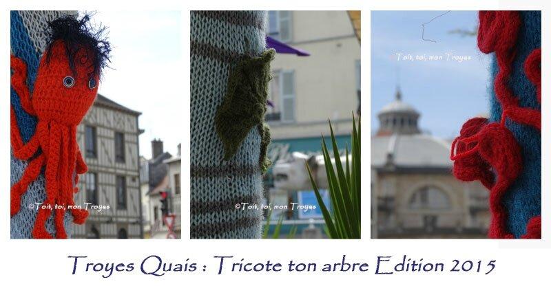 TROYES_Tricote-ton-arbre-2e-édition
