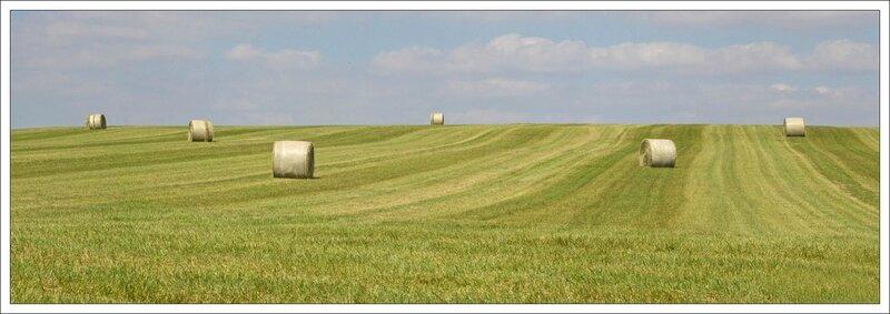 plaine paysage balles lignes 050914